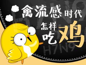 禽流感横行 还能吃鸡吗