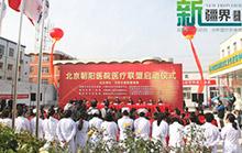 北京朝阳医院医疗联盟成立