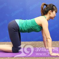 猫伸式产后丰胸瑜伽7