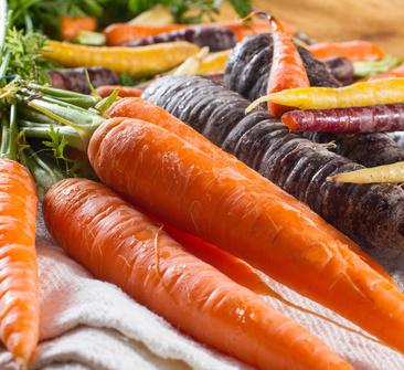 getty_rm_photo_of_fresh_salmon_fillet_ALT