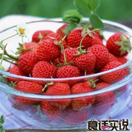 第35期:吃反季水果不会伤身体
