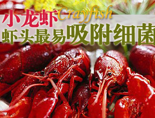 小龙虾虾头最易吸附细菌