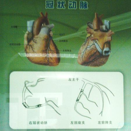 daoguanshi