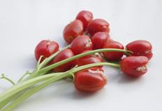 水果+瘦肉 超美味营养瘦身