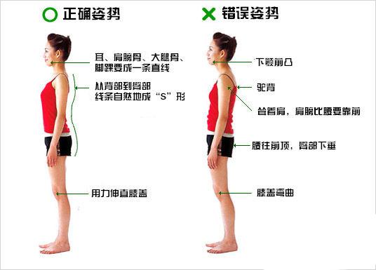 瘦身的最快方法(照片)