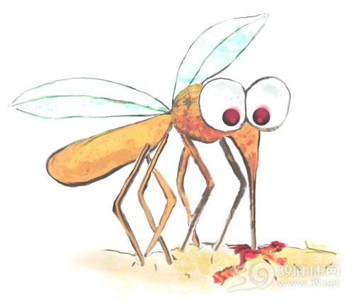 夏天防蚊有妙招,皮炎都不用怕