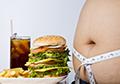 脂肪肝专题