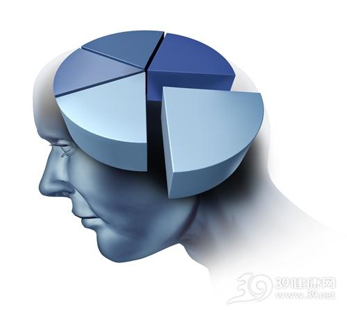 头部 脑部 百分比_15500979_xl