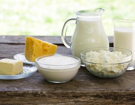奶制品-牛奶-酸奶-奶油-黄油-乳酪_10551980_xxl