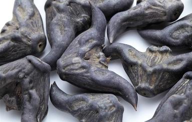 蛤蟆偏方治肿瘤险致命