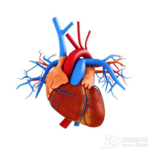 (养好血管人不老 吃对食物血管不生病)   西红柿:不仅各种维生素含量比苹果、梨高2至4倍,而且还含维生素一芦丁,它可提高机体氧化能力,消除自由基等体内垃圾,保持血管弹性,有预防血栓形成的作用。   洋葱:含有一种较强血管扩张作用的前列腺素A,它能舒张血管,降低血液黏度,减少血管的压力,同时洋葱还含有二烯丙基二硫化物和含硫氨基酸,可增强纤维蛋白溶解的活性,具有降血脂、抗动脉硬化的功能。   苹果:苹果富含多糖果酸及类黄酮、钾及维生素E和C等营养成分,可使积蓄于体内的脂肪分解,避免过胖,对推迟和预防动脉