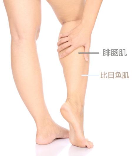 减小腿最有效的方法 图解