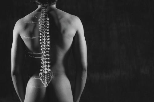 风湿,类风湿,强直性脊柱炎,强直性脊柱炎病因