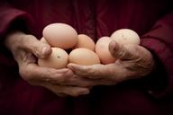 老人115岁无病无痛不吃药,自己散步、穿针无问题,全家长寿!原来因为平时爱吃它,不看后 - 万荣县西村乡卫生院 - 您的健康,我们与你同行