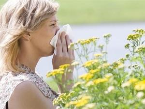清明踏青 警惕季节性过敏性鼻炎