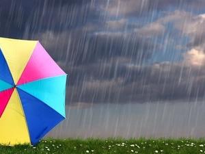 气象主播遭雷击,雷劈急救,感应雷击