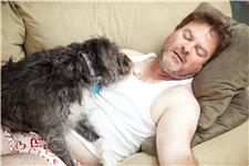 中老年 男 肥胖 超重 真钱色碟 睡觉 沙发 狗 宠物 失业_21788299_xxl