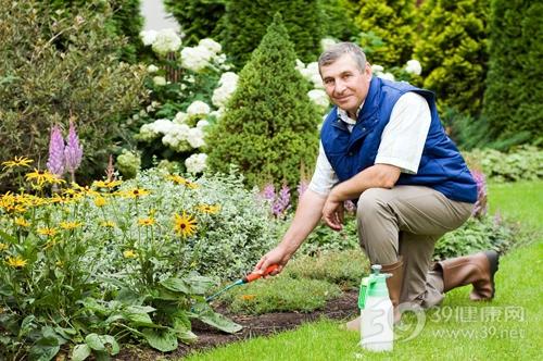 中老年 男 园林 园艺 种花 浇水 花园 花圃_5612775_xxl
