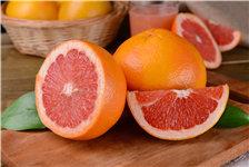 西柚 葡萄柚 柚子 水果_27067695_xxl_副本