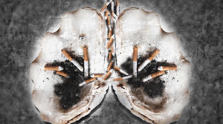 抽多少支烟会伤肺?超过这数你的肺要坏了
