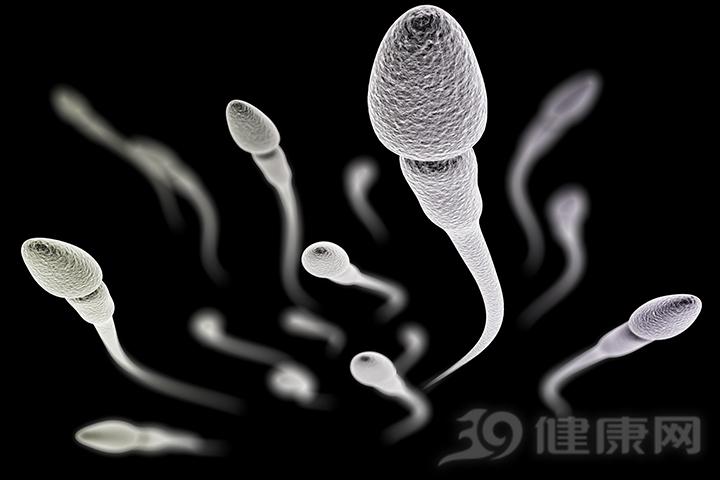 怎么判别男人的精子质量?