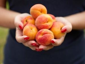 夏季吃什么水果好?推荐最适合夏季吃的水果