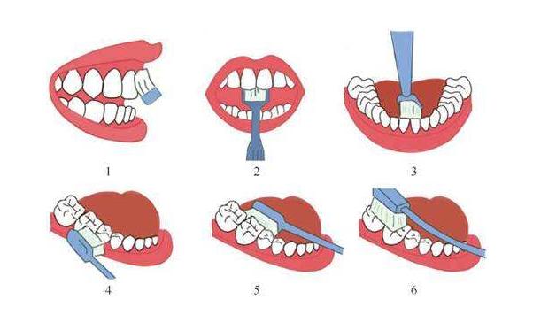 三舌锁的内部结构图