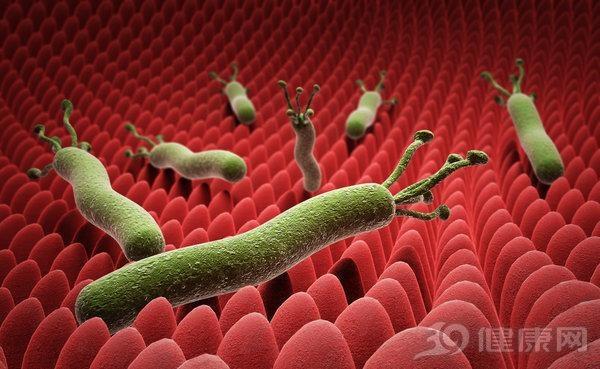 幽门螺杆菌怕什么药?医生