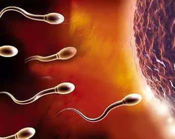 精子不液化