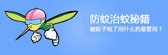 防蚊治蚊秘籍