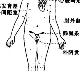 乳溢-闭经综合征