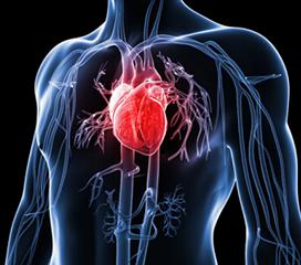 高原性心脏病