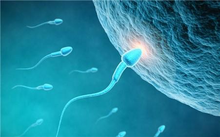 精子质量下降