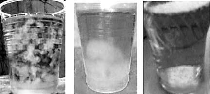 尿液中有稠厚胶样物