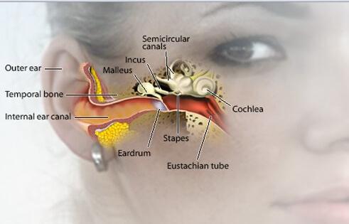 神经性耳鸣