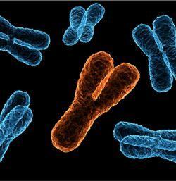 染色体异常