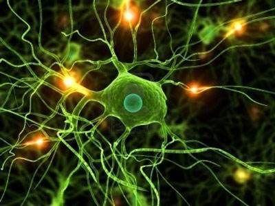 神经系统遗传病
