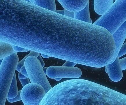 细菌性阴道炎