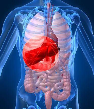 转移性肝癌