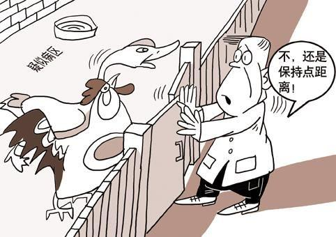 人禽流行性感冒