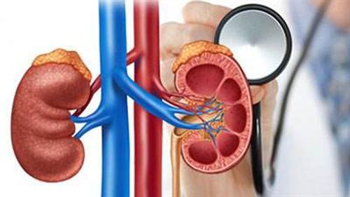 Ⅳ型肾小管性酸中毒