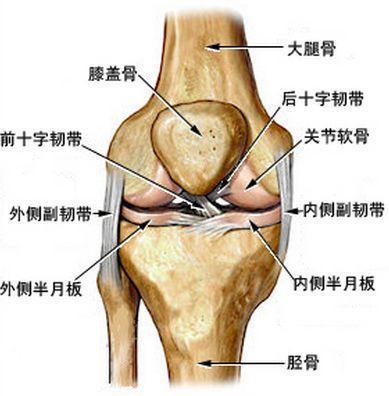 膝关节滑膜皱襞综合征