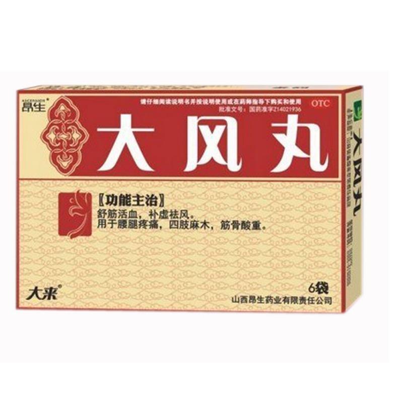 大风丸(卢医山)