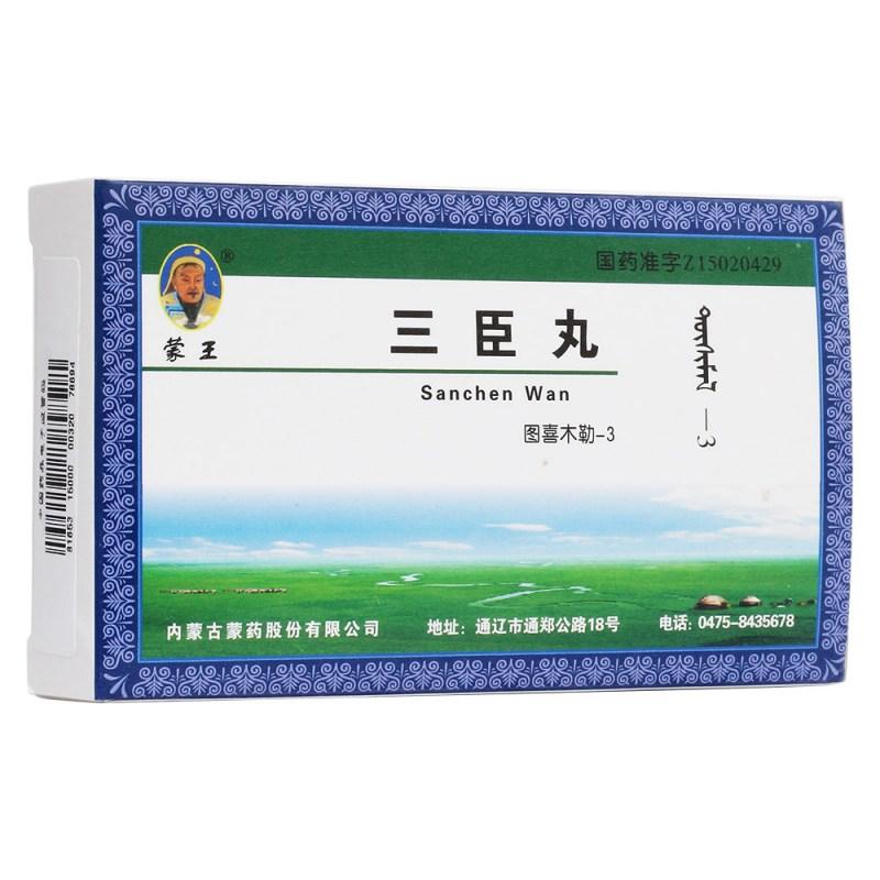 三臣丸(蒙王)