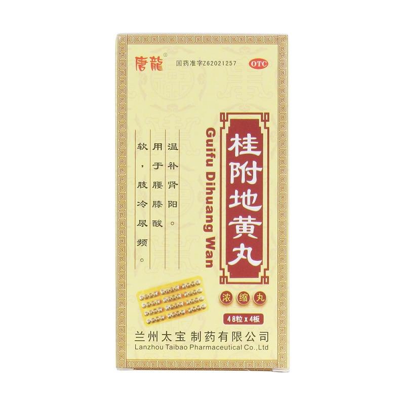 桂附地黄丸(唐龙)(浓缩丸)