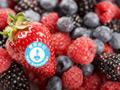 冰冻过的蔬果营养更高