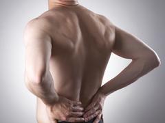 背部肌肉训练计划