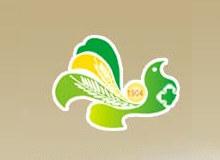 山东中医药大学附属第二医院logo