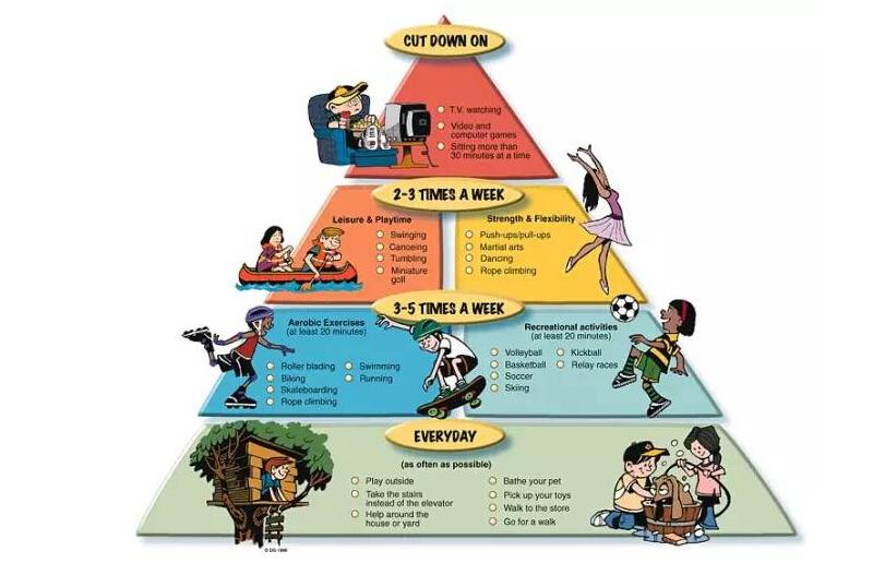 运动金字塔,分别在几层?