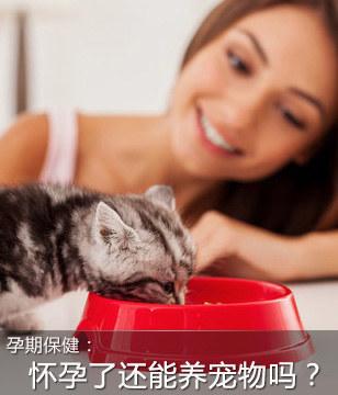 怀孕了还能养宠物吗?专家这样说
